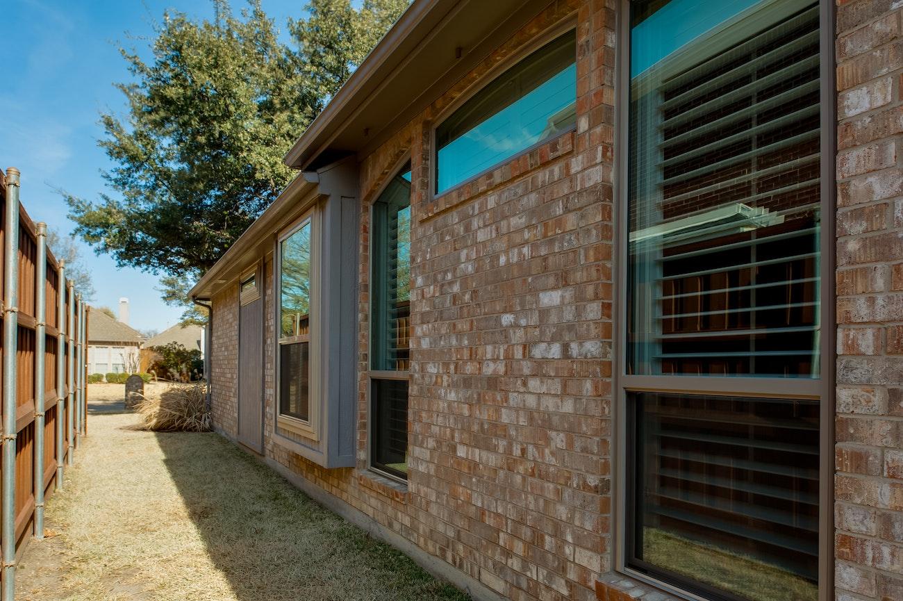 brennan-traditions-single-hund-side-view-window